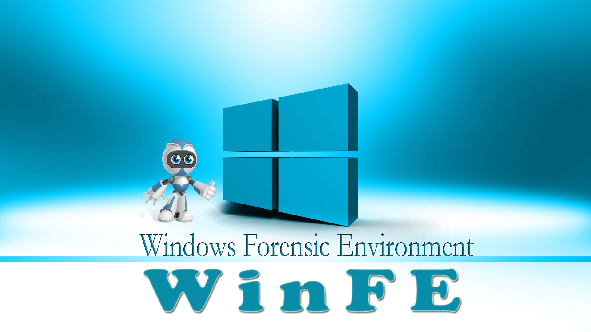 Windows Forensic Environment