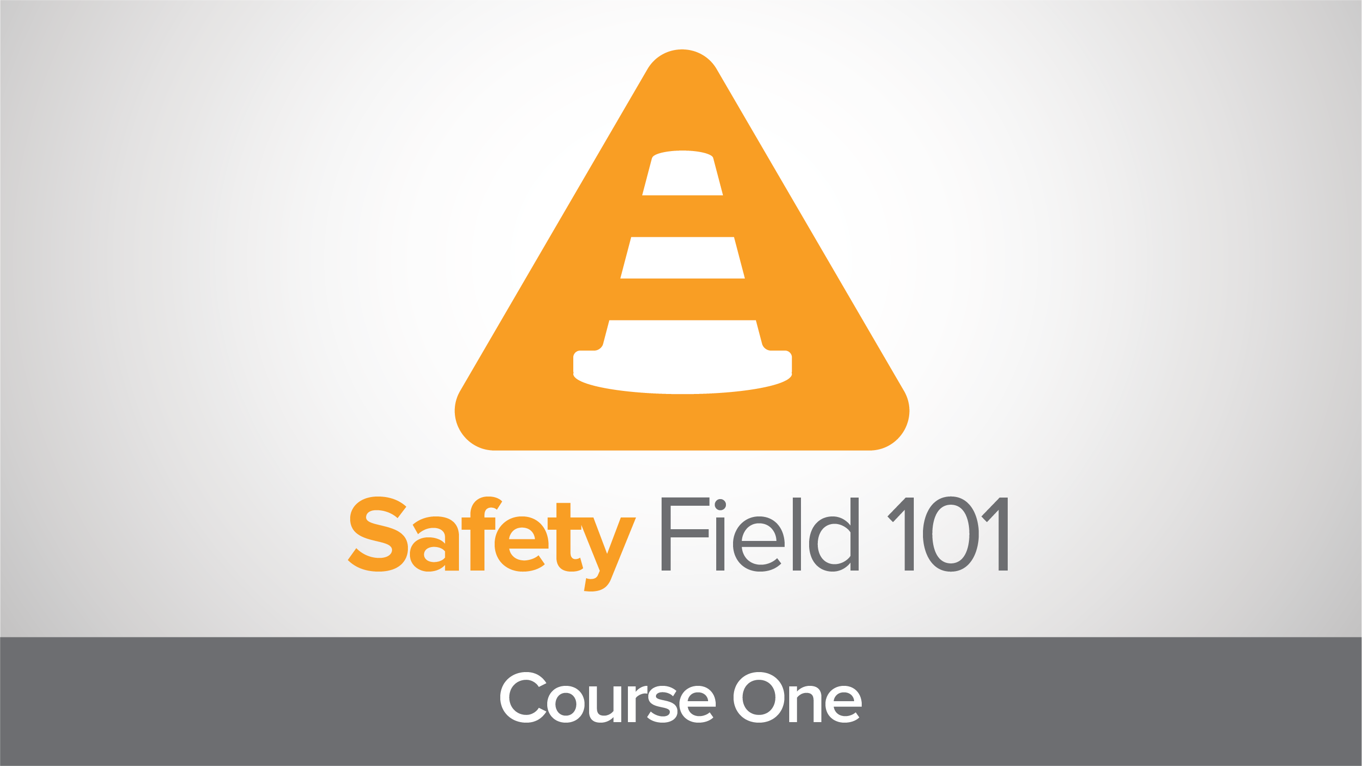 Safety Field 101: Introduction to Safety