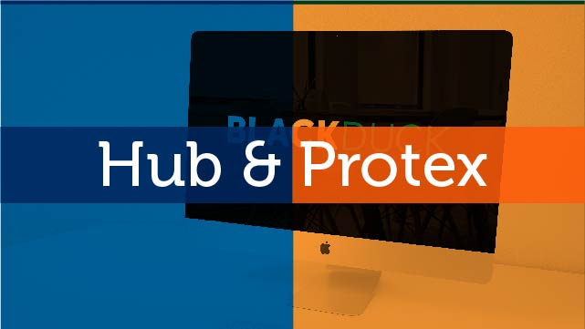 Importing Your Protex BOM into Black Duck Hub